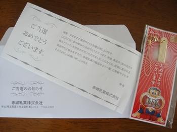 DSC02589a.JPG